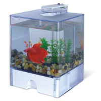 Аквариум для петушка AA-Aquariums Aqua Box Betta, 3л, 150*150*225мм