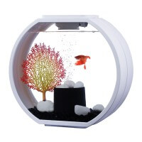 Аквариум AA-Aquariums Deco O Mini, 10л, белый, 335*136*310 мм