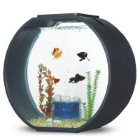 Аквариум AA-Aquariums Deco O Max, 54л, черный, 560*280*325мм